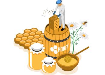 curso-introducción-apicultura-tradicional-ecológica-Formalba